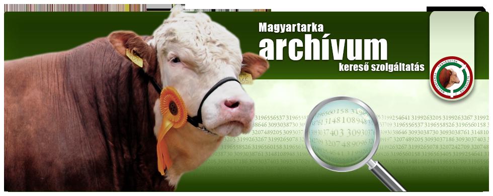 Magyartarka archívum, kereső szolgáltatás